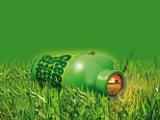 8_greengrass
