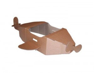 avion_carton